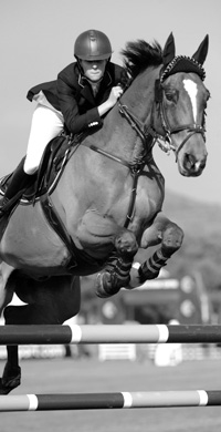 Showjumping Photography